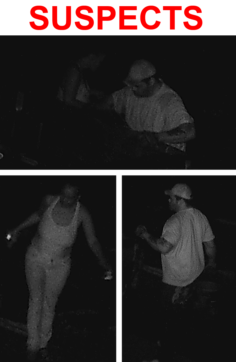 Metal Theft Suspects