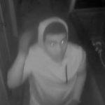 Raceland Burglaries Suspect View 2 10192018
