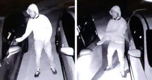 Vehicle Burglaries 05062019